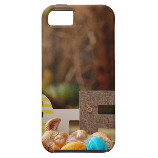 Easter- #4 iPhone 5 covers