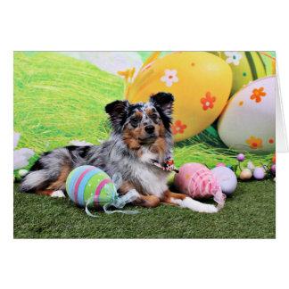 Easter - Australian Shepherd - Silas Barker Card