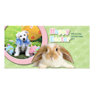 Easter - Bichon Frise X - Sammy Photo Card Template