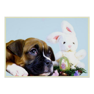 Easter boxer puppy poster