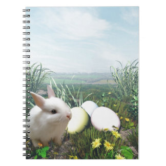 Easter Bunny and Easter Eggs Note Books