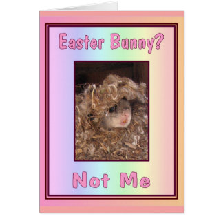 Easter Bunny? Card