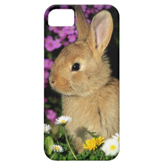 Easter Bunny Case For The iPhone 5