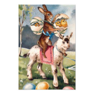 Easter Bunny Chick Colored Painted Egg Goat Photograph