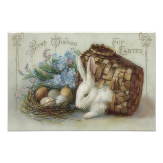 Easter Bunny Colored Painted Egg Basket Forget Me Photographic Print