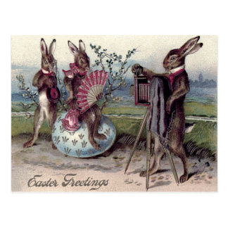 Easter Bunny Couple Camera Egg Postcard