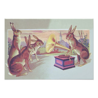 Easter Bunny Gramophone Phonograph Art Photo