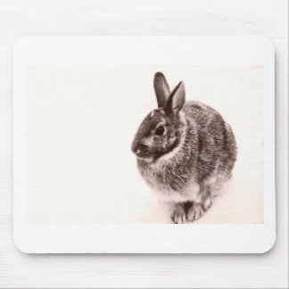 Easter Bunny Rabbit  Black and white Mouse Pad