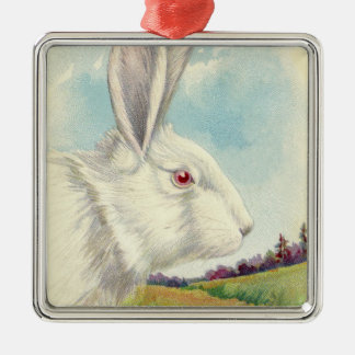 Easter Bunny White Albino Field Silver-Colored Square Decoration