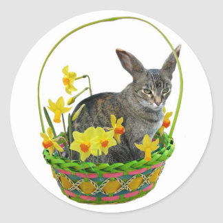 Easter Cat in Daffodils Sticker