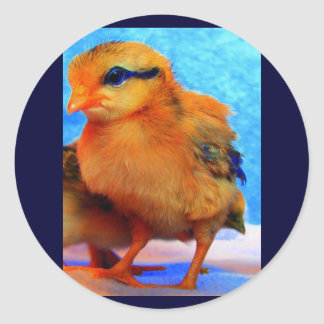 Easter Chick-A-Dee-Light Round Sticker