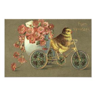 Easter Chick Egg Chrysanthemum Bike Love Letter Photo