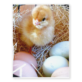 Easter Chick in Basket Temporary Tattoo