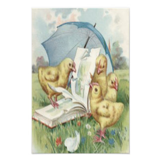 Easter Chick Umbrella Book Flower Field Photographic Print