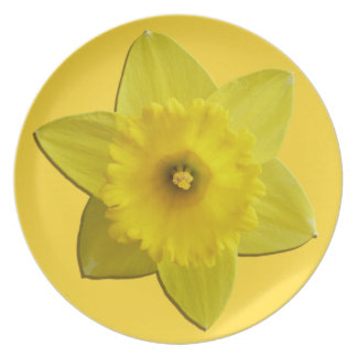 Easter Daffodil Plates Classic Easter Party Decor