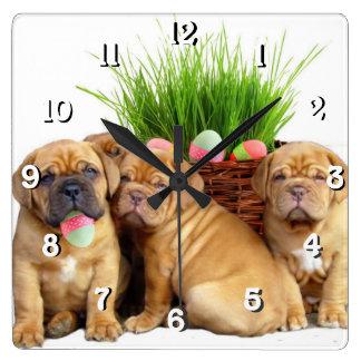 Easter Dogue de Bordeaux dog Square Wall Clock