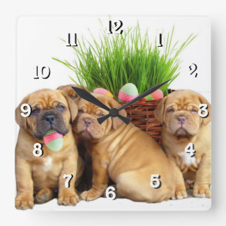 Easter Dogue de Bordeaux dog Wallclocks