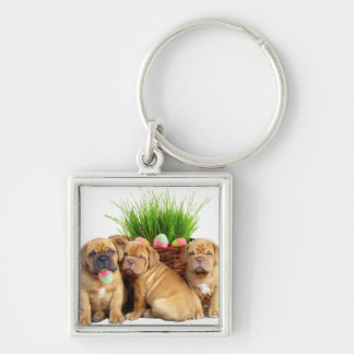 Easter Dogue de Bordeaux puppies Silver-Colored Square Key Ring