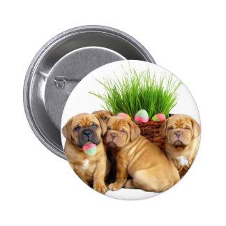 Easter Dogue de Bordeaux pups Button