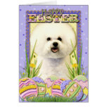 Easter Egg Cookies - Bichon Frise