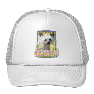 Easter Egg Cookies - Chinese Crested Mesh Hat