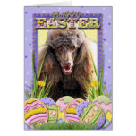 Easter Egg Cookies - Poodle - Chocolate