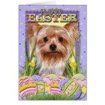 Easter Egg Cookies - Yorkshire Terrier Greeting Card