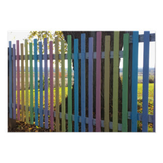 Easter Fence Photo Print