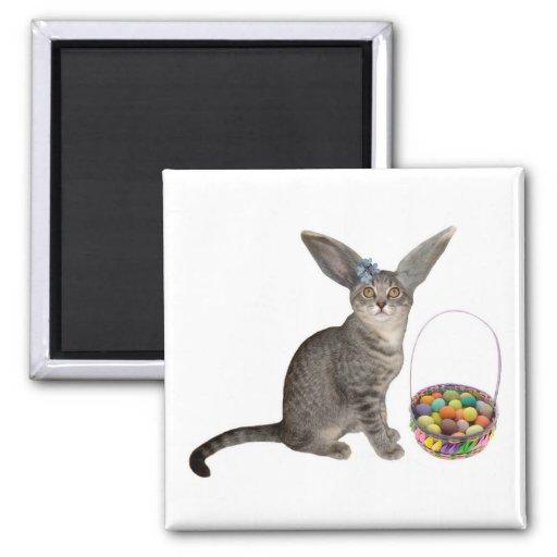 Easter Kitten Magnet