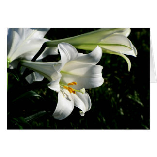 Easter Lily Card Blank  #1000  01000
