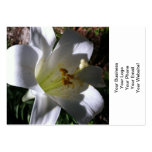 Easter Lily Shadow Business Card