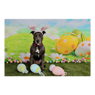 Easter - Pitbull  - Gunner Poster