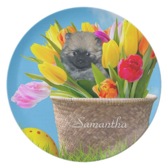 Easter pomeranian puppy personalised plate