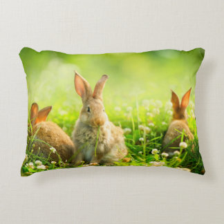 Easter Rabbits Decorative Cushion
