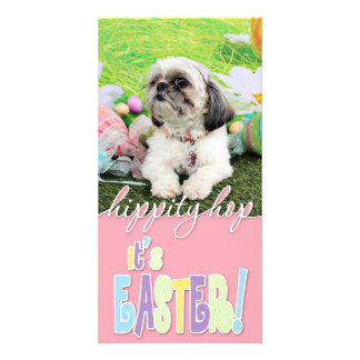 Easter - Shih Tzu - Sophie Picture Card