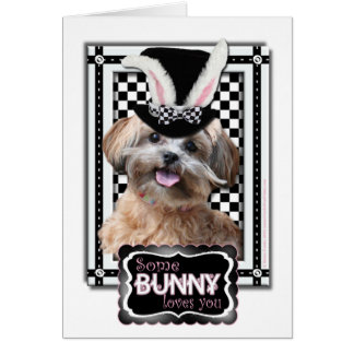 Easter - Some Bunny Loves You - ShihPoo Cards