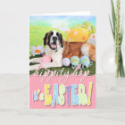 Easter - St Bernard - Ozzie Christmas Card