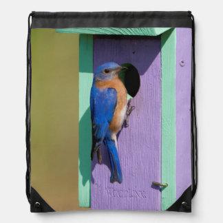 Eastern Bluebird Backpack