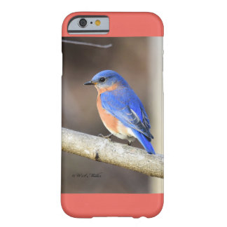 Eastern Bluebird Barely There iPhone 6 Case