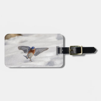 Eastern Bluebird dancing in the snow Luggage Tag