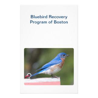 Eastern Bluebird Custom Flyer
