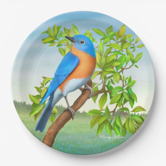 Eastern Bluebird in Tree Paper Plates 9 Inch Paper Plate