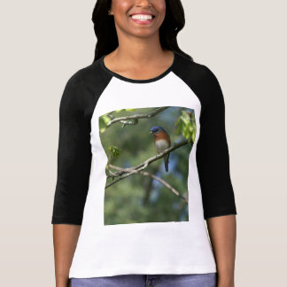 Eastern Bluebird Shirt