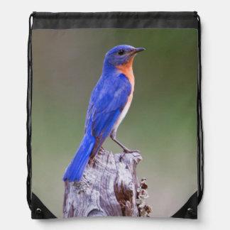 Eastern Bluebird (Sialia Sialis) Adult Male Drawstring Bag