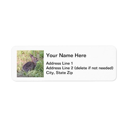 Eastern Cottontail Return Address Label