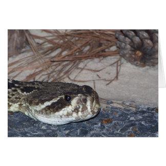 eastern diamondback rattlesnake greeting card