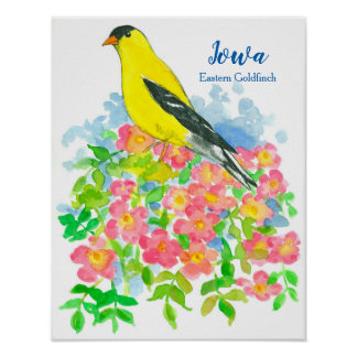 Eastern Goldfinch Pink Roses Iowa State Bird Poster