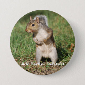 Eastern Gray Squirrel button