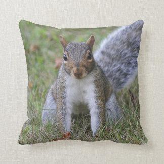 Eastern Gray Squirrel Cushion