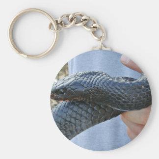 Eastern indigo snake (Drymarchon corais couperi) Key Ring